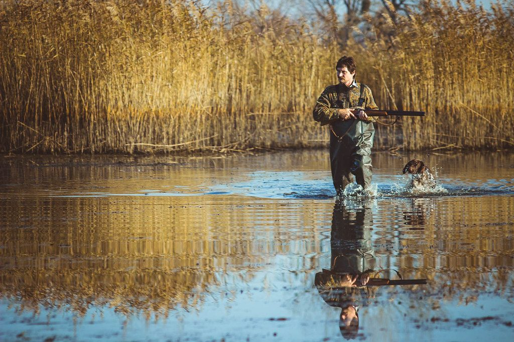 duck hunting 1