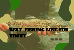 The Best Fishing Line for Trout – What to Look For & Top Recommendations!