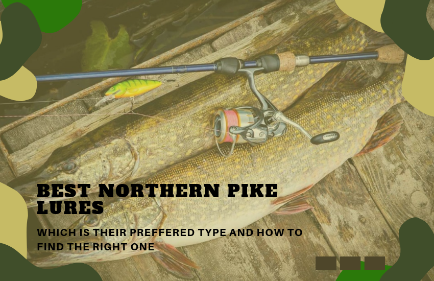 The Best Northern Pike Lures – How To Find The Right One?