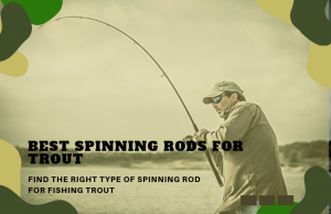The Best Spinning Rods for Trout – Find the Right One For You