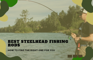 The Best Steelhead Fishing Rods – How To Find The Right One!