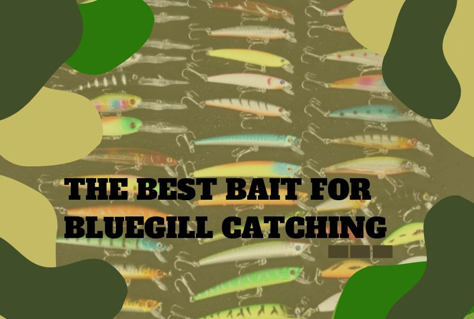 The Best Bait for Bluegill Fishing (Types & Best Options!)