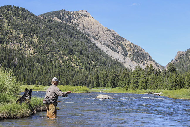 Trout FIshing Best Spinning Rods
