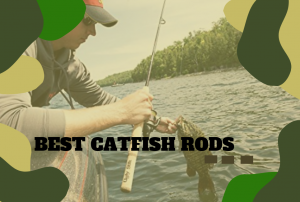 The Best Catfish Rods – Find the Right Type of Catfish Rod!